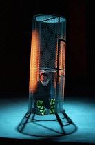 TWELFTH NIGHT by Shakespeare design: Huntley/Muir lighting: Alan Burrett director: David Pountney imprisoned: Richard Durden (Malvolio)Nottingham Playhouse, Nottingham, England 11/02/1995 Donald Coope...