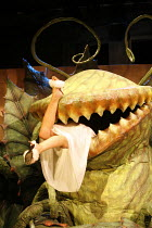 LITTLE SHOP OF HORRORS   music: Alan Menken   book & lyrics: Howard Ashman   ,director: Matthew White              based on the film by Roger Corman   screenplay: Charles Griffith,^Audrey II^ swallows...