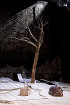 WAITING FOR GODOT   by Samuel Beckett   design: Stephen Brimson Lewis   lighting: Paul Pyant   director: Sean Mathias ~~empty stage set tree props~Theatre Royal Haymarket (TRH), London SW1...