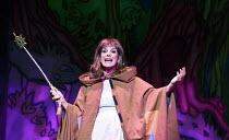 CINDERELLA   written by Eric Potts   choreographer: Lizzi Gee   director: Ian Talbot Linda Gray (Fairy Godmother) New Wimbledon Theatre, London SW19   09/12/2014  Donald Cooper/Photostage   donald@pho...