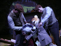Tommy Brock and Mr Tod fight - l-r: Steven Hardcastle, Oliver Mawdsley in WHERE IS PETER RABBIT? opening at the Old Laundry Theatre, Bowness-on Windermere, Cumbria, England on 28/06/2016 music: Steven...