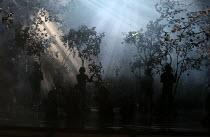 the forest: A MIDSUMMER NIGHT'S DREAM music: Benjamin Britten after Shakespeare opening at Glyndebourne Festival Opera, East Sussex, England on 11/08/2016   conductor: Jakub Hrusa set design: John Bur...