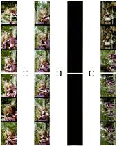 A MIDSUMMER NIGHT'S DREAM  by Shakespeare  design: David Knapman  lighting: Jason Taylor  director: Rachel Kavanaugh  Ian Talbot (Bottom)  Serena Evans (Titania)  Issy van Randwyck (Helena) Open Air...
